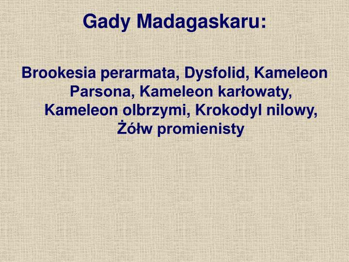 Gady Madagaskaru:
