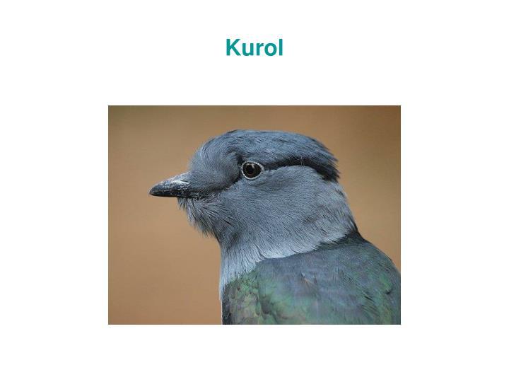 Kurol