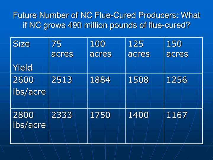 Future Number of NC Flue-Cured Producers: What if NC grows 490 million pounds of flue-cured?