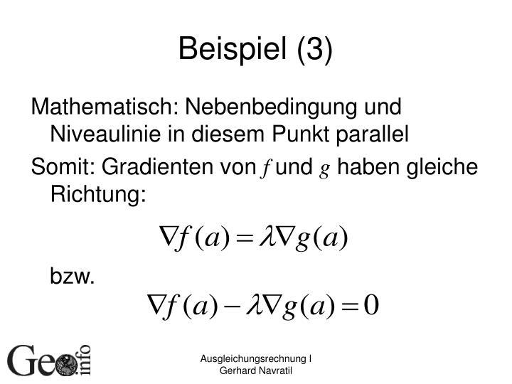 Beispiel (3)