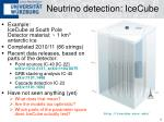 neutrino detection icecube