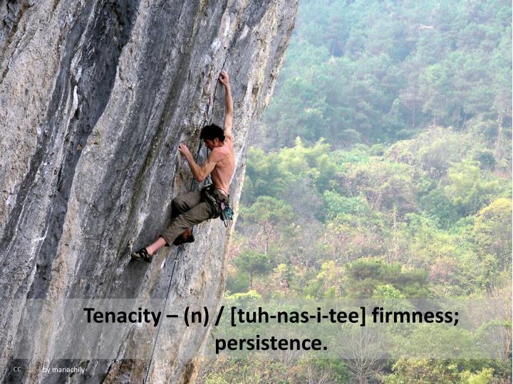 Tenacity – (n) / [tuh-nas-i-tee] firmness; persistence.