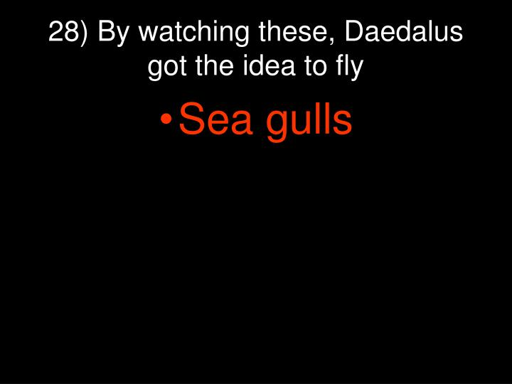 28) By watching these, Daedalus got the idea to fly