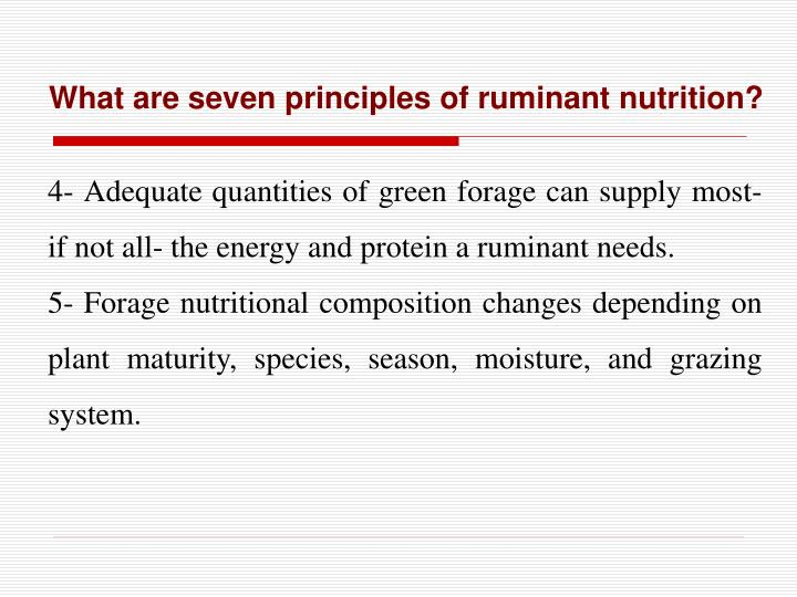 What are seven principles of ruminant nutrition?