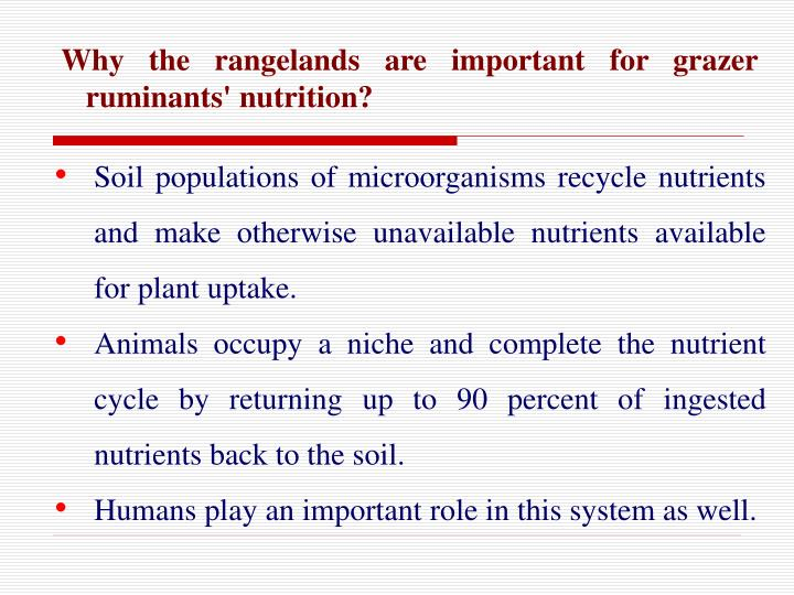Why the rangelands are important for grazer ruminants' nutrition?