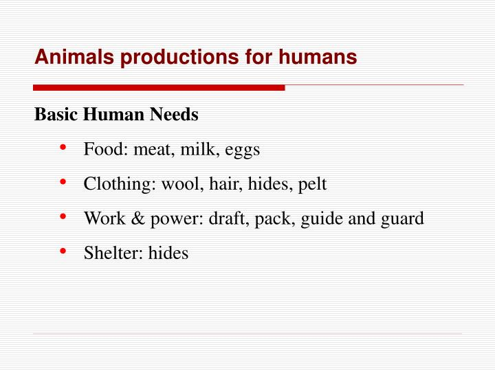 Animals productions for humans