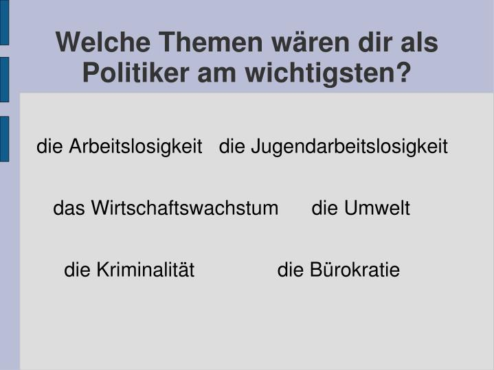Welche Themen wren dir als Politiker am wichtigsten?