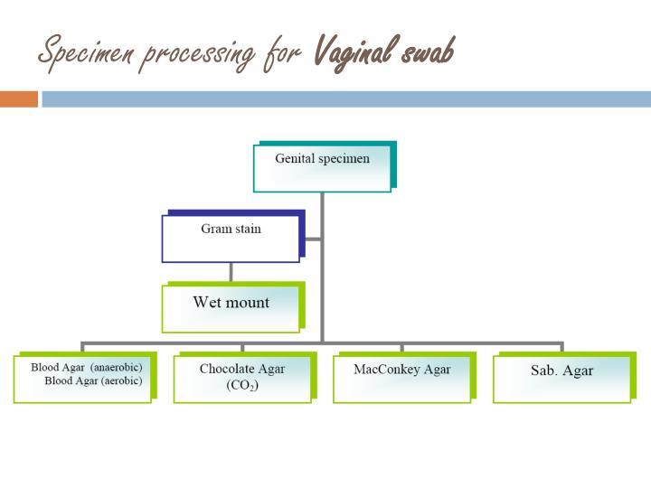 Specimen processing for
