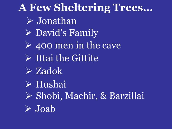 A Few Sheltering Trees…