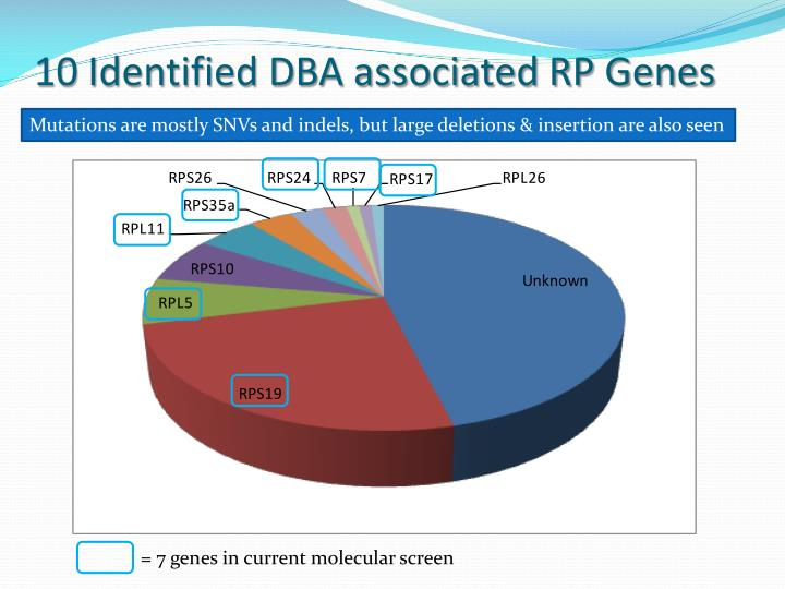 10 Identified DBA associated RP Genes