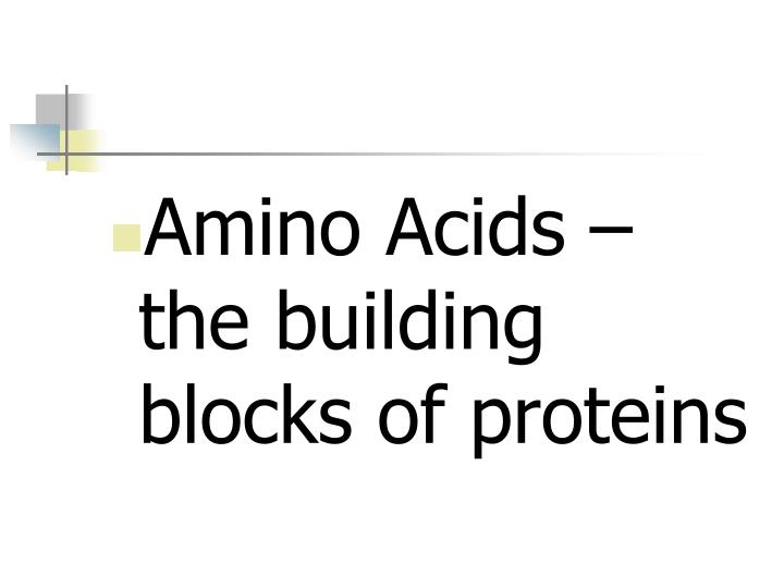 Amino Acids – the building blocks of proteins