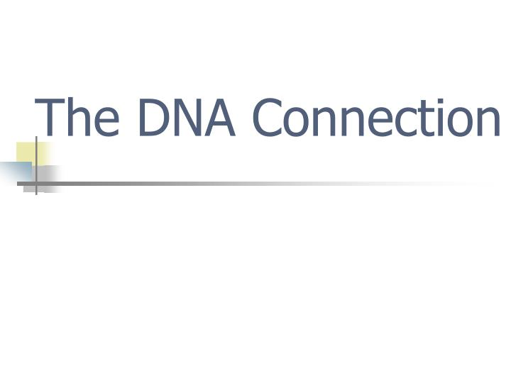 The dna connection