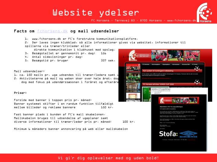 Website ydelser