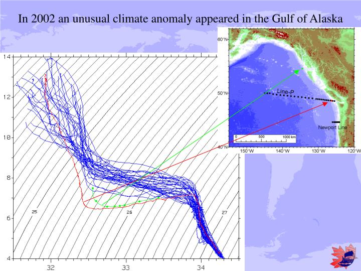 In 2002 an unusual climate anomaly appeared in the Gulf of Alaska