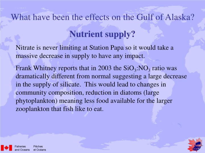 What have been the effects on the Gulf of Alaska?