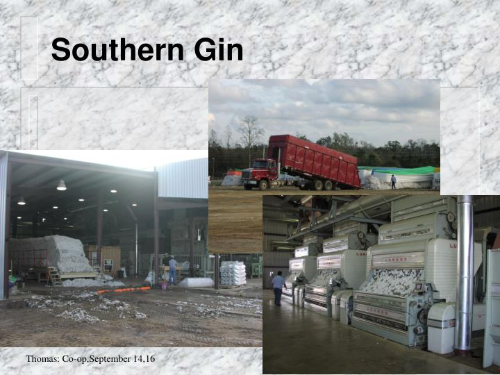 Southern Gin