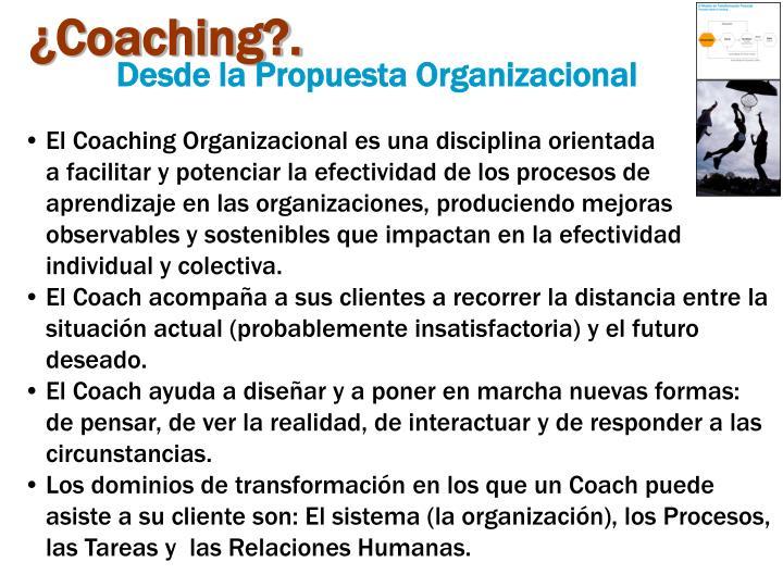 ¿Coaching?.