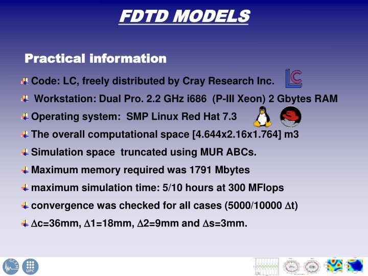 FDTD MODELS
