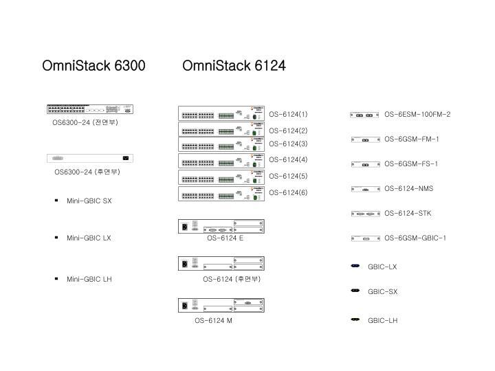 OmniStack 6300