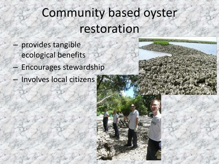 Community based oyster restoration