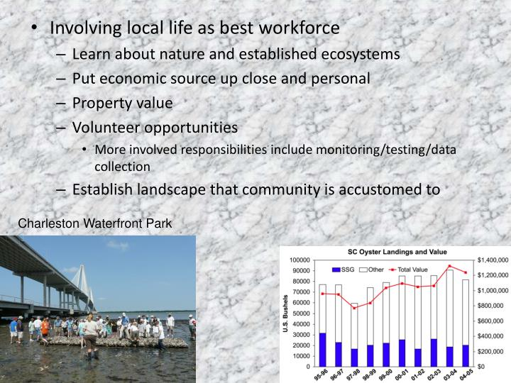 Involving local life as best workforce