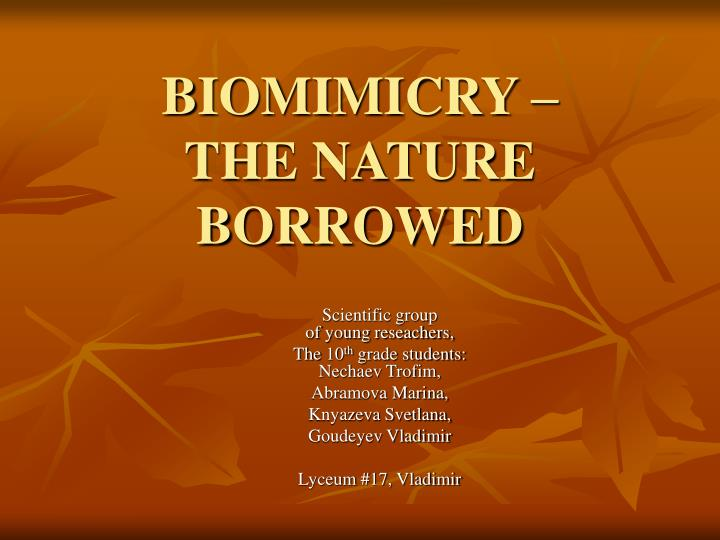 Biomimicry the nature borrowed