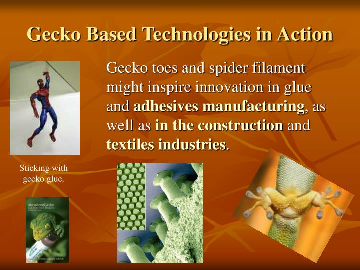 Sticking with gecko glue.
