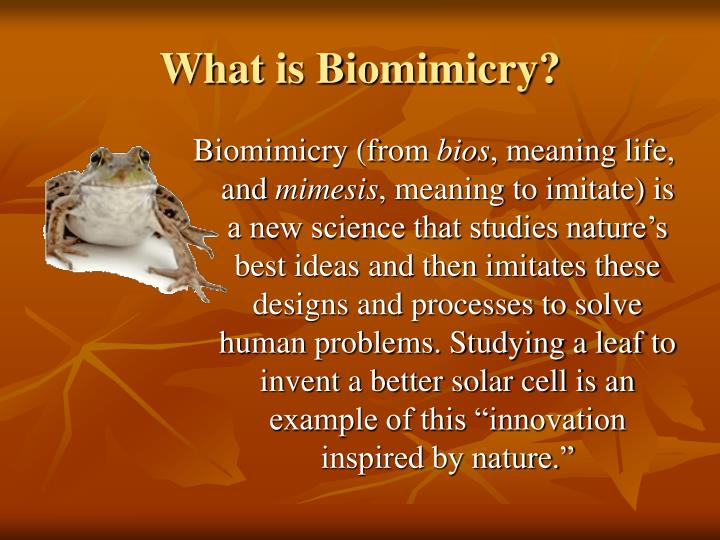 What is Biomimicry?