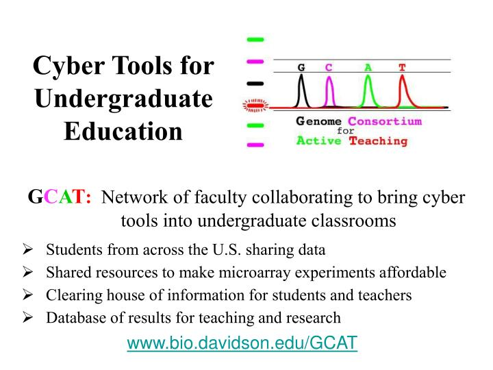 Cyber Tools for Undergraduate Education