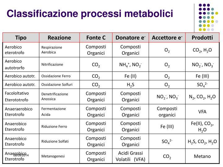 Classificazione processi metabolici