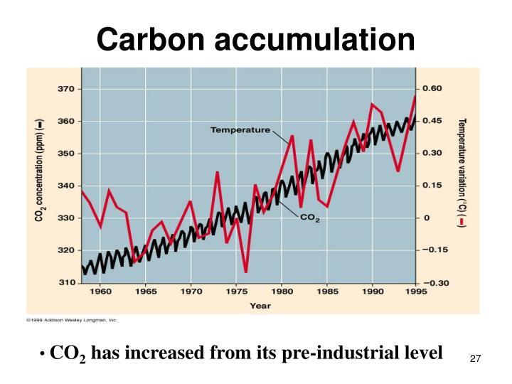 Carbon accumulation