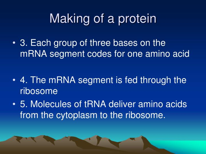 Making of a protein