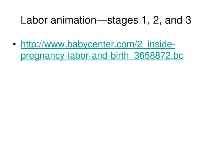 Labor animation—stages 1, 2, and 3