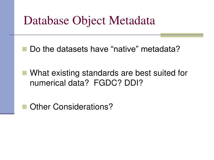 Database Object Metadata