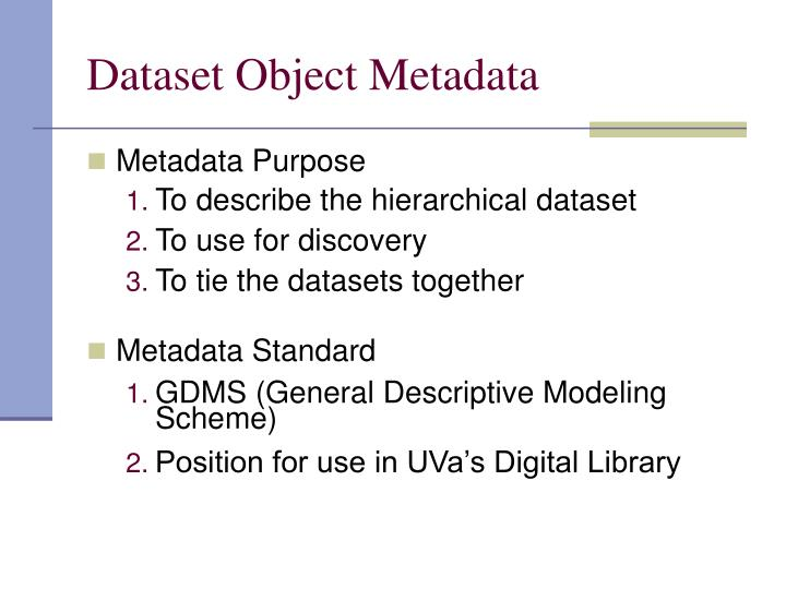 Dataset Object Metadata