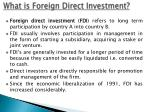 what is foreign direct investment