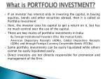 what is portfolio investment
