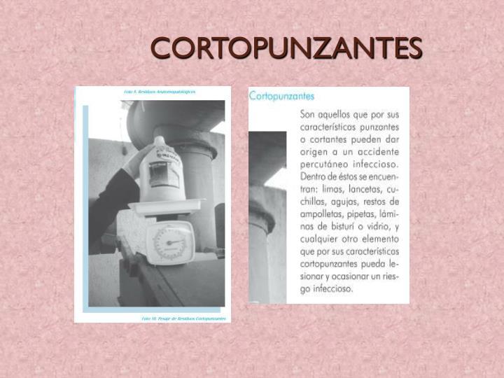 CORTOPUNZANTES