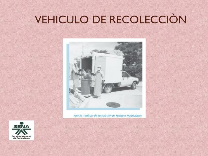 VEHICULO DE RECOLECCIÒN
