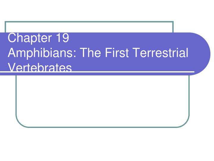 Chapter 19 amphibians the first terrestrial vertebrates
