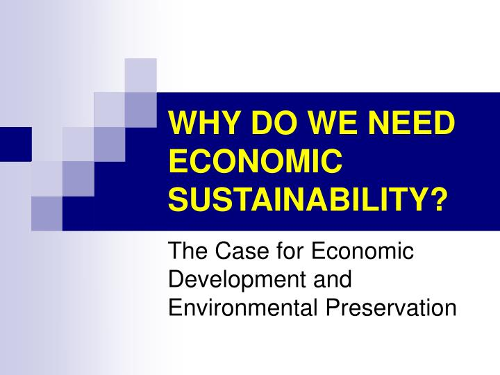 Why do we need economic sustainability