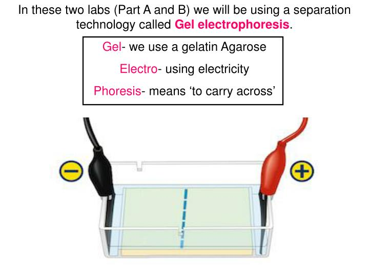 In these two labs (Part A and B) we will be using a separation technology called