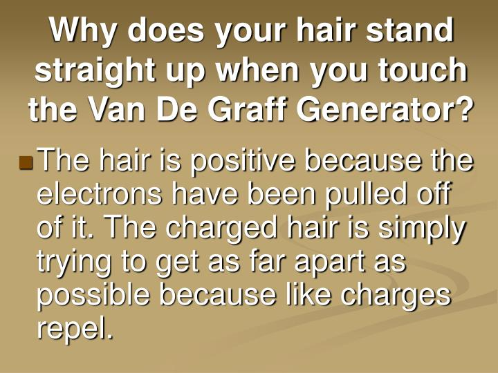 Why does your hair stand straight up when you touch the Van De Graff Generator?