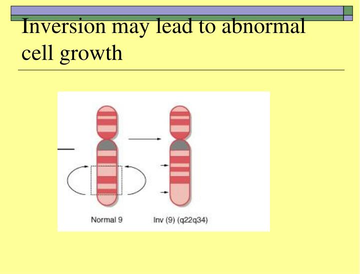 Inversion may lead to abnormal cell growth