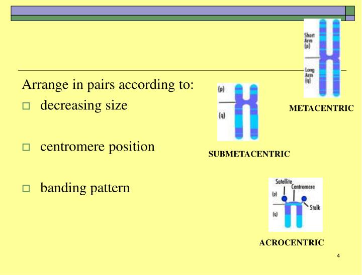 Arrange in pairs according to: