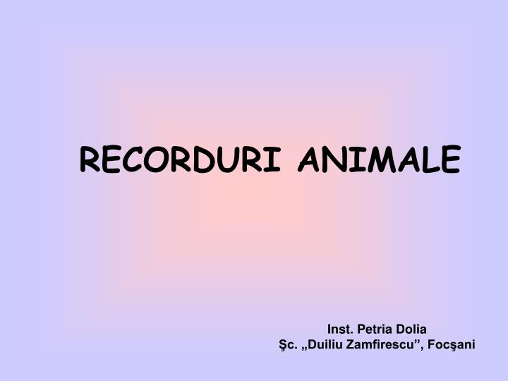 RECORDURI ANIMALE