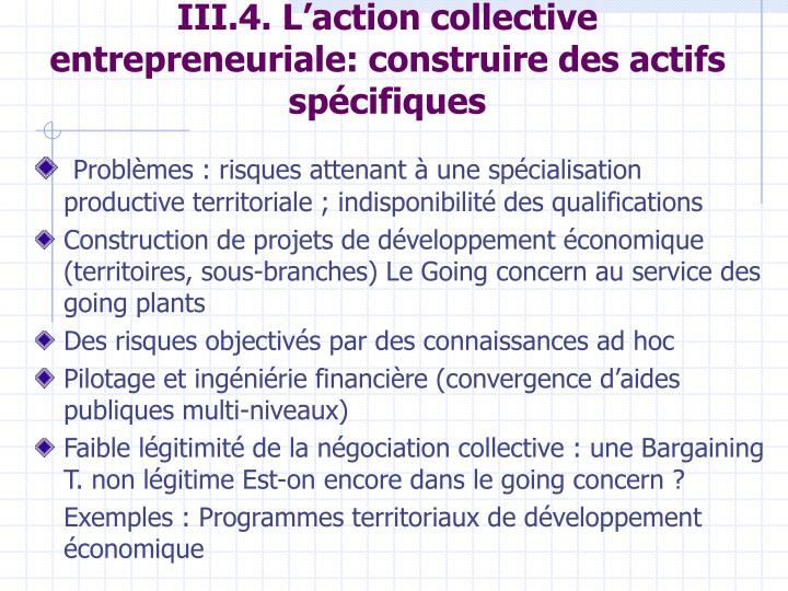 III.4. L'action collective entrepreneuriale: construire des actifs spécifiques