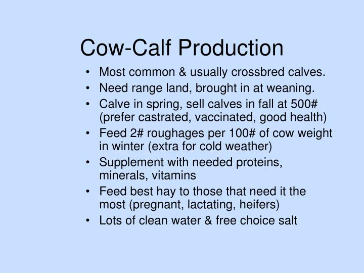 Cow-Calf Production