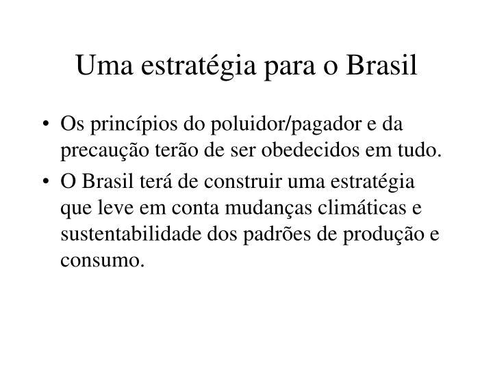 Uma estratégia para o Brasil