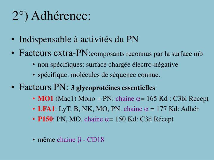 2°) Adhérence: